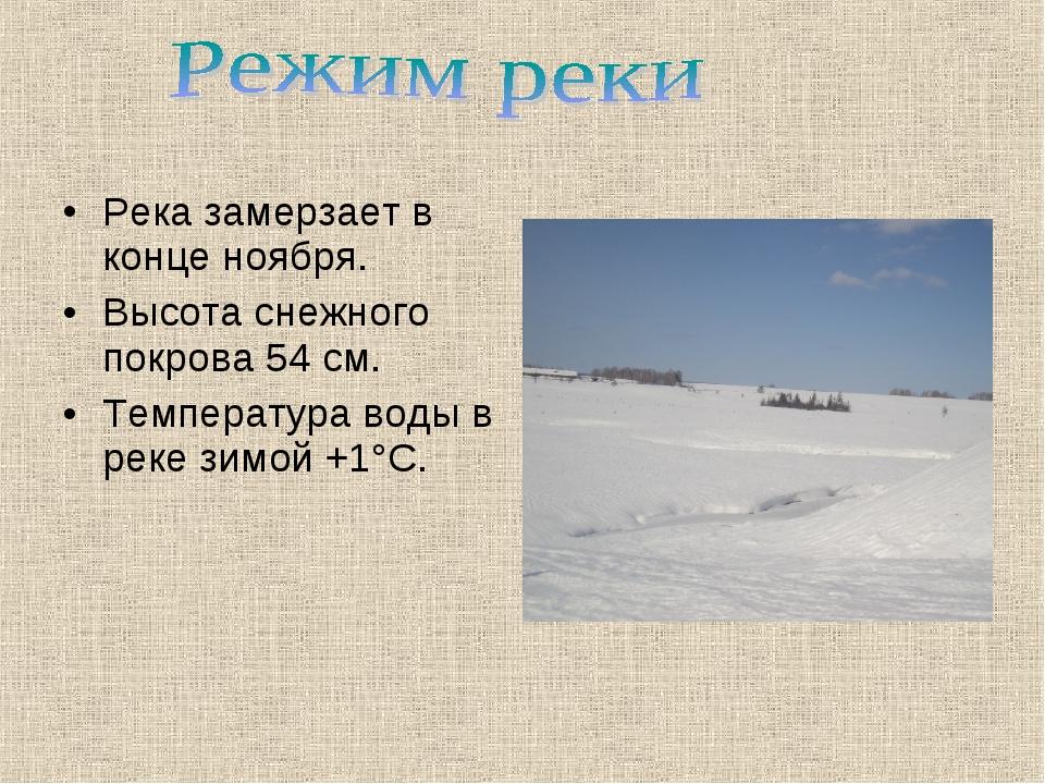 Река замерзает в конце ноября. Высота снежного покрова 54 см. Температура вод...