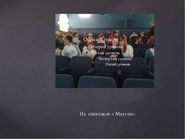 На спектакле « Маугли».
