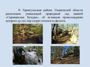 В Теренгульском районе Ульяновской области расположен уникальный природный с