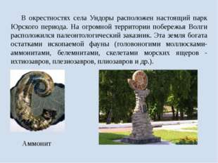 В окрестностях села Ундоры расположен настоящий парк Юрского периода. На огр