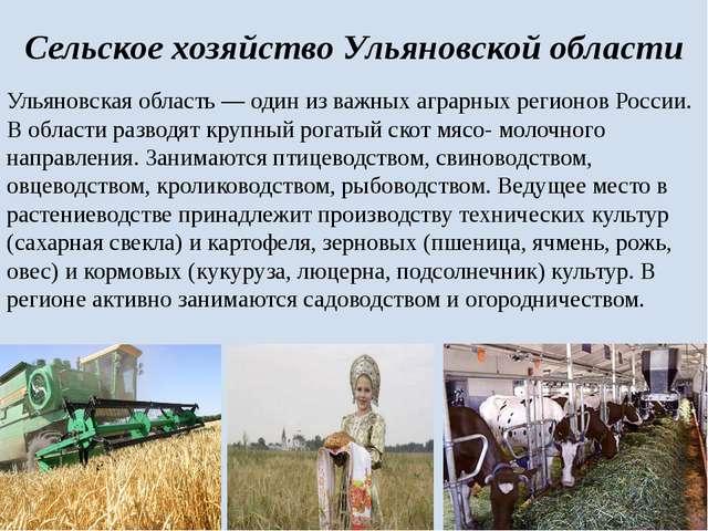 Сельское хозяйство Ульяновской области Ульяновская область— один из важных а...
