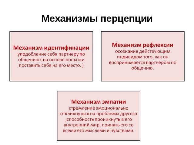 Механизмы перцепции
