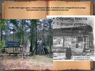 В 1900-1902 годах здесь стояла вековая тайга. В южной и юго-западной части ул