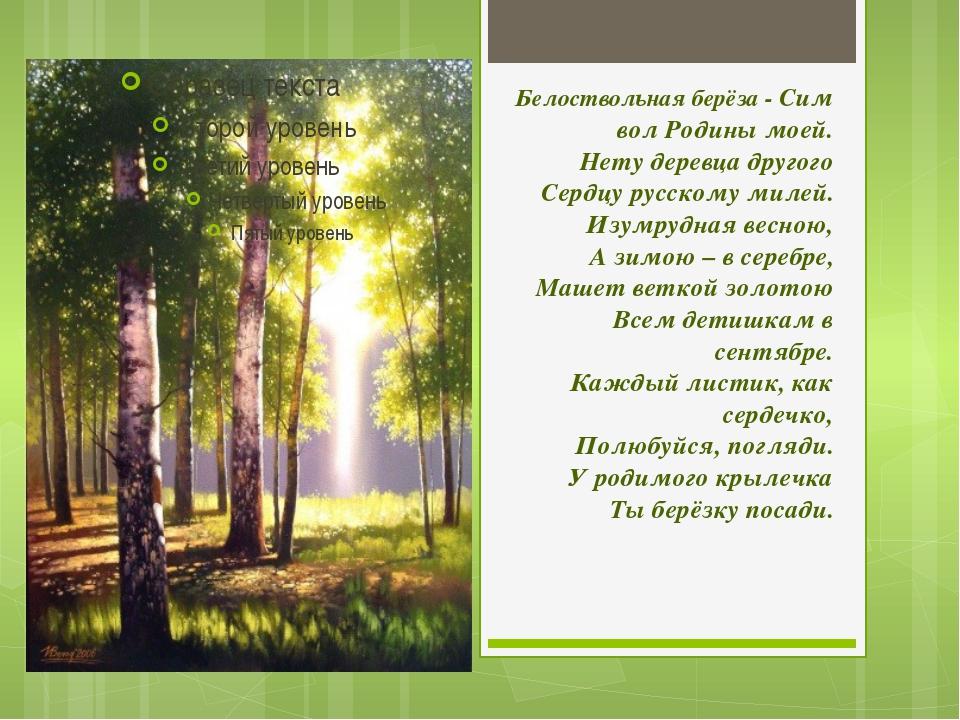 Белоствольнаяберёза-Символ Родины моей. Нету деревца другого Сердцу русск...