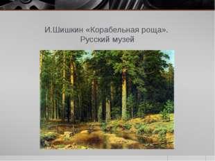 И.Шишкин «Корабельная роща». Русский музей