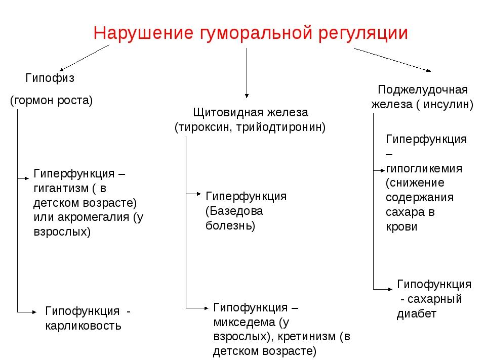 Нарушение гуморальной регуляции Гипофиз (гормон роста) Щитовидная железа (тир...