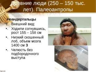Древние люди (250 – 150 тыс. лет). Палеоантропы Неандертальцы Внешний вид: Хо