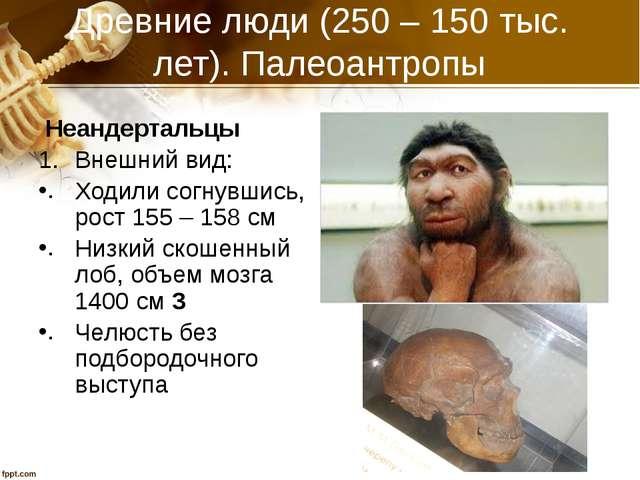 Древние люди (250 – 150 тыс. лет). Палеоантропы Неандертальцы Внешний вид: Хо...