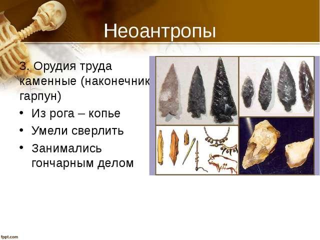 Неоантропы 3. Орудия труда каменные (наконечник, гарпун) Из рога – копье Умел...