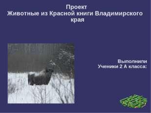 Проект Животные из Красной книги Владимирского края Выполнили Ученики 2 А кл