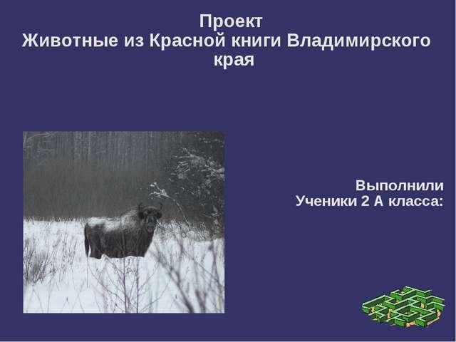 Проект Животные из Красной книги Владимирского края Выполнили Ученики 2 А кл...