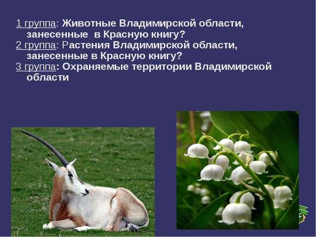 1 группа: Животные Владимирской области, занесенные в Красную книгу? 2 группа...