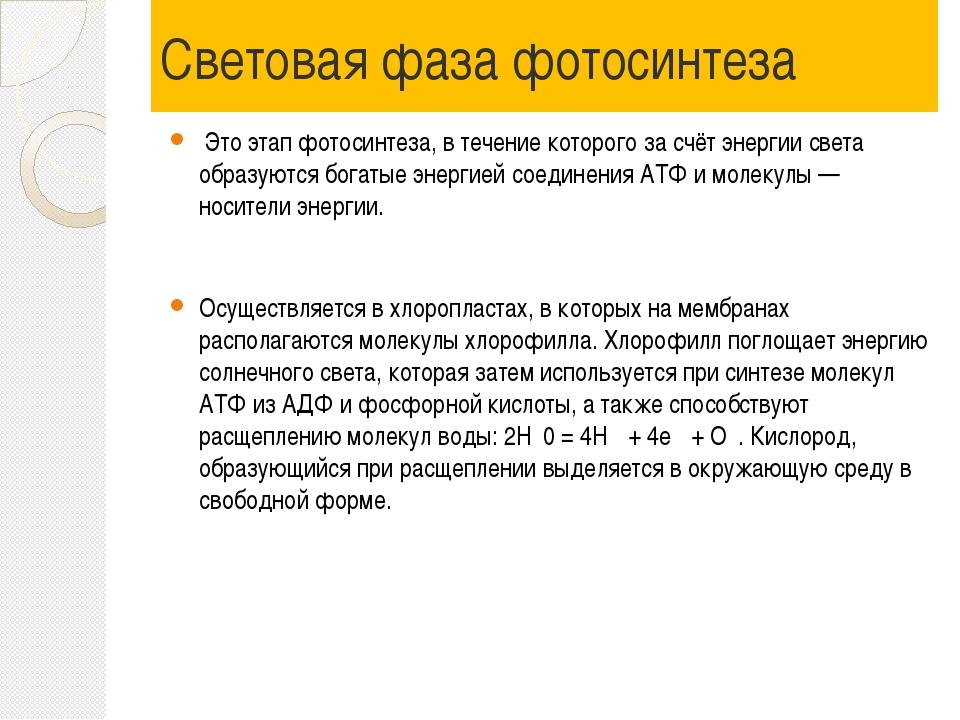 Световая фаза фотосинтеза Это этап фотосинтеза, в течение которого за счёт эн...