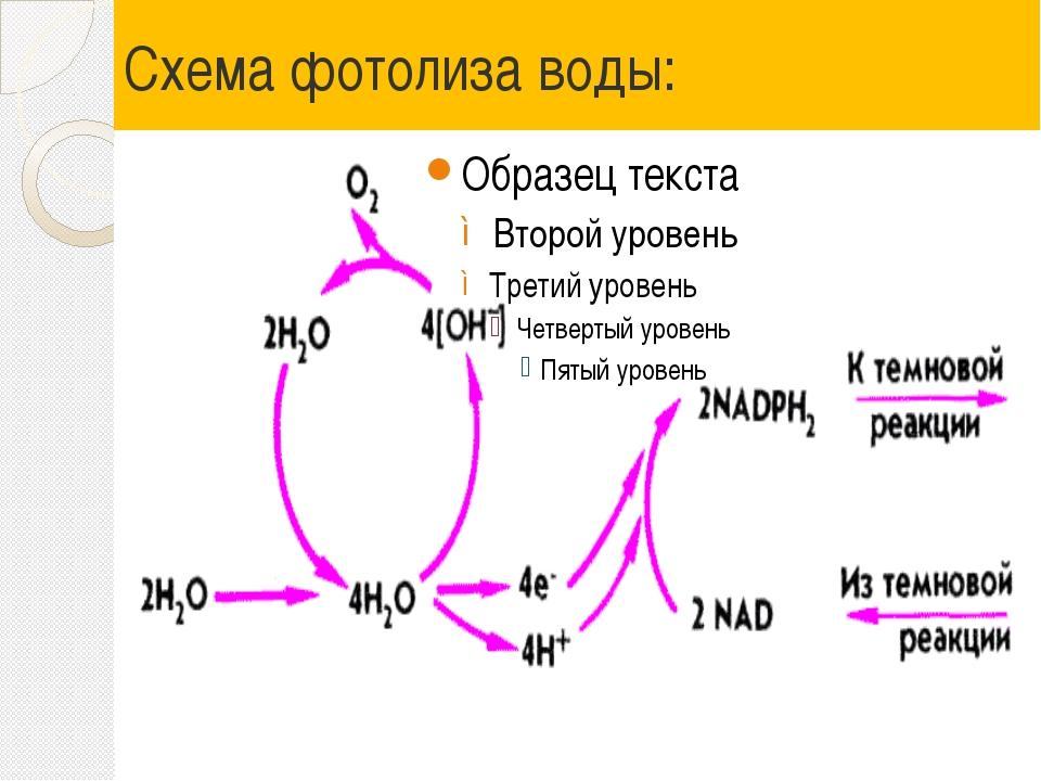 Схема фотолиза воды: