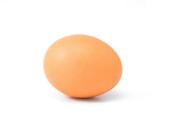 Яйцо Бесплатная фотография - Public Domain Pictures