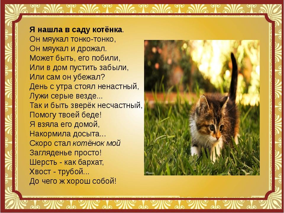Я нашла в саду котёнка стих