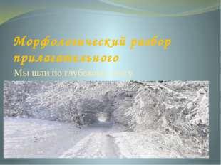 Морфологический разбор прилагательного Мы шли по глубокому снегу.