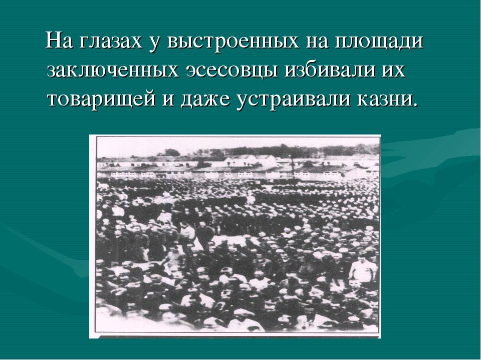 На глазах у выстроенных на площади заключенных эсесовцы избивали их товарище...