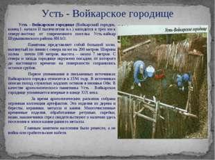Усть - Войкарское городище (Войкарский городок, конец I- начало II тысячелет