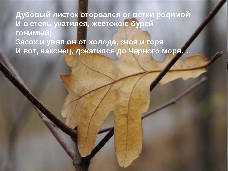 Дубовый листок оторвался от ветки родимой И в степь укатился, жестокою бурей...