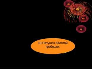 Б) Петушок Золотой гребешок
