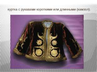 куртка с рукавами короткими или длинными (камзол).