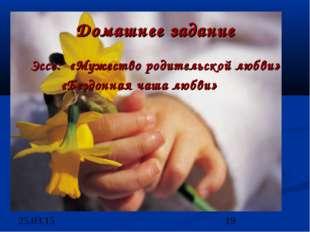 Домашнее задание Эссе: «Мужество родительской любви» «Бездонная чаша любви»