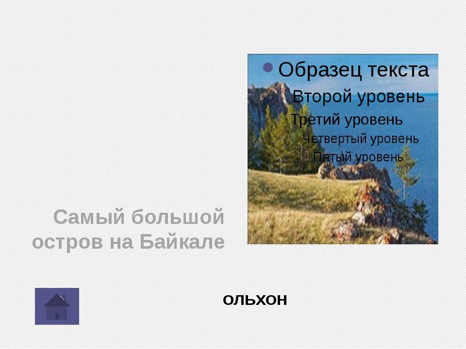 Какая рыба водится только в Байкале? Омуль Жергалова О.Д.