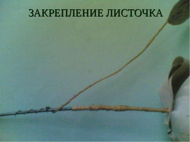 ЗАКРЕПЛЕНИЕ ЛИСТОЧКА