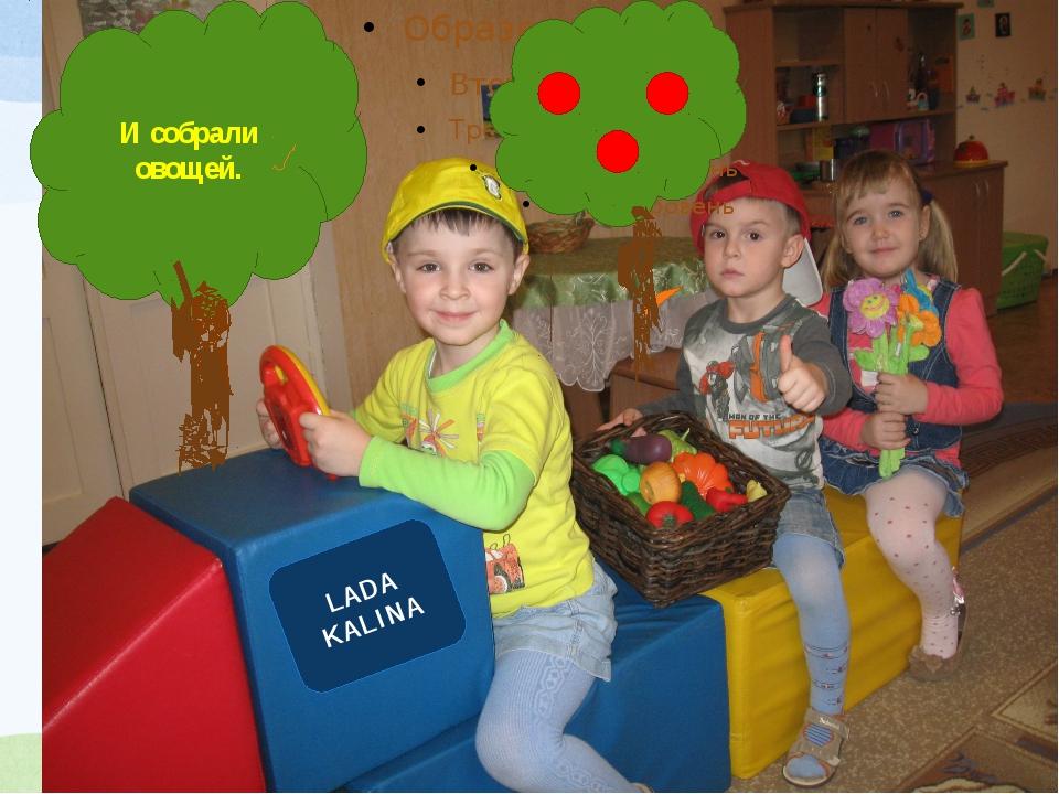 И собрали овощей. LADA KALINA