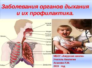 Заболевания органов дыхания и их профилактика. МБОУ «Амурская школа» Учитель