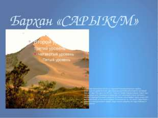 Бархан «САРЫКУМ» Севернее Махачкалы (20 км.) у подножия Кумторкалинского хреб