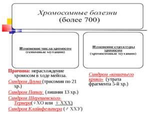 Хромосомные болезни (более 700) а) изменение числа хромосом (геномные мутаци