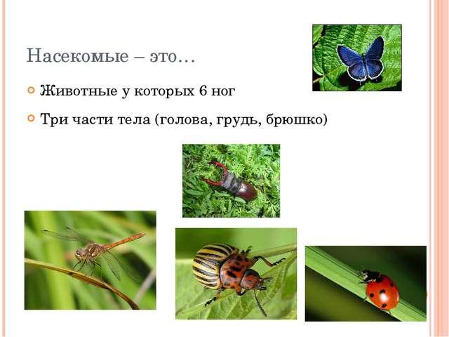 Насекомые – это… Животные у которых 6 ног Три части тела (голова, грудь, брюш...