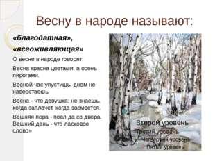 Весну в народе называют: «благодатная», «всеоживляющая» О весне в народе гово