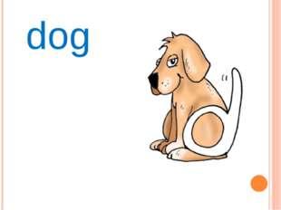 Dd dog