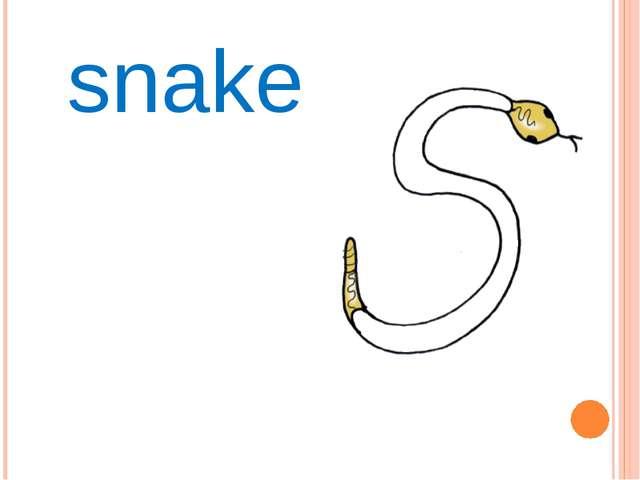 Ss snake