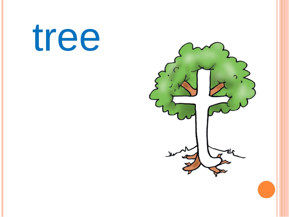 всех деревья в картинках на английскому хищник данном водохранилище