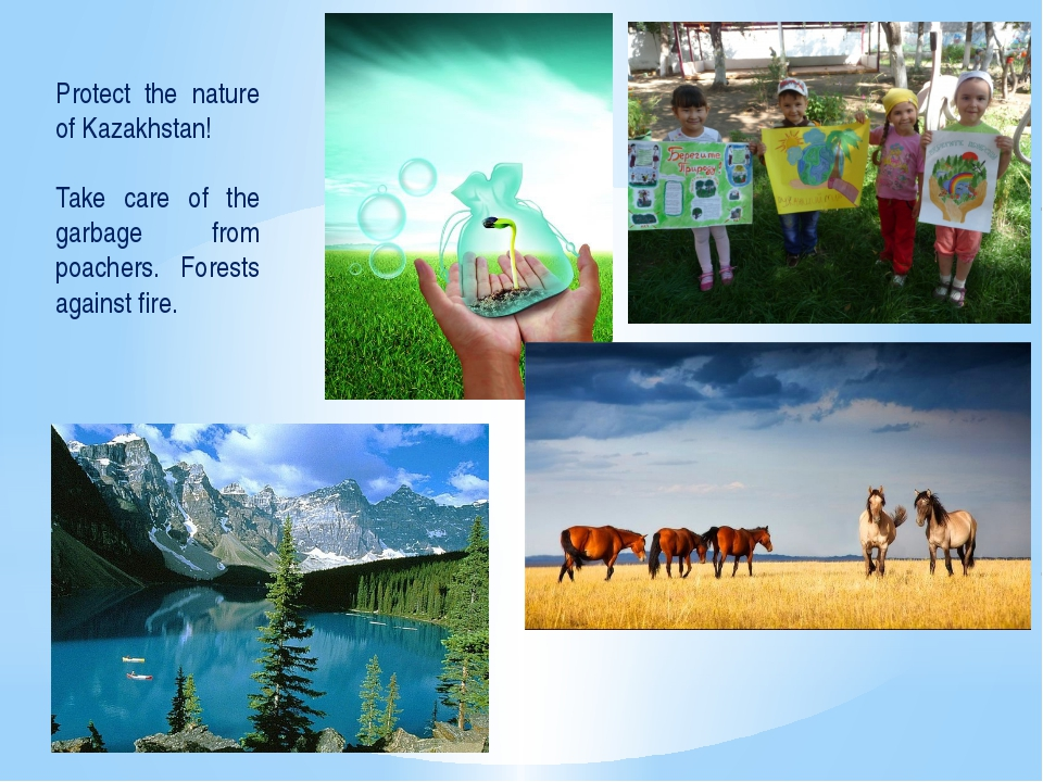 Protect the nature of Kazakhstan! Take care of the garbage from poachers. For...