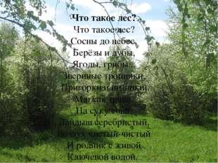 Что такое лес? Что такое лес? Сосны до небес, Берёзы и дубы, Ягоды, грибы...