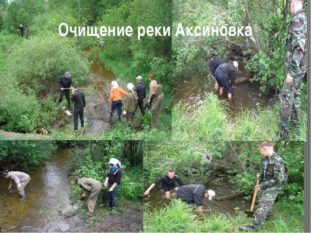 Очищение реки Аксиновка
