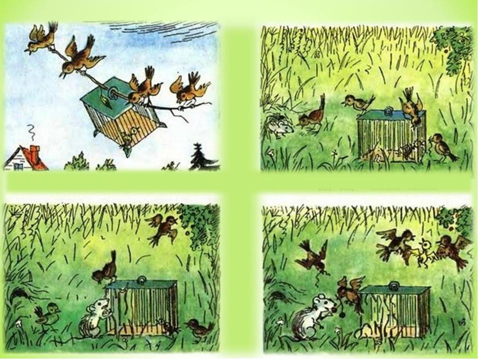 Радлов рассказы в картинках для детей