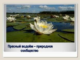Пресный водоём – природное сообщество