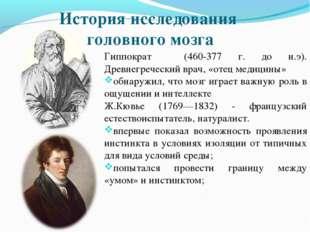 История исследования головного мозга Гиппократ (460-377 г. до н.э). Древнегре