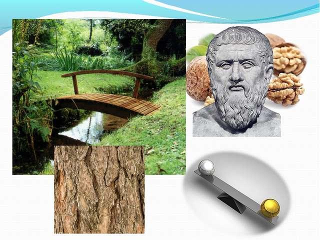 Ядра грецкого ореха совсем не случайно внешне напоминают модель человеческого...