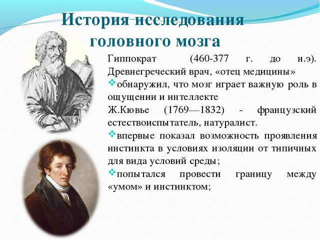 История исследования головного мозга Гиппократ (460-377 г. до н.э). Древнегре...