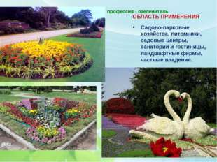 профессия - озеленитель   ОБЛАСТЬ ПРИМЕНЕНИЯ Садово-парковые хозяйства, пит