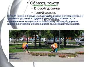 профессия - озеленитель  Готовят семена и посадочный материал древесно-куста
