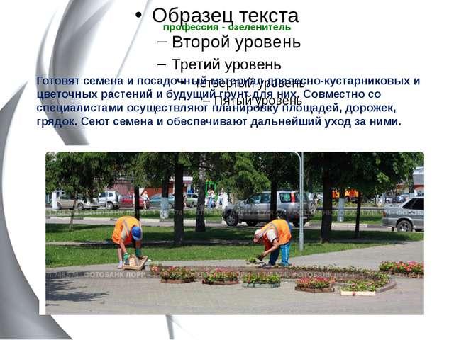 профессия - озеленитель  Готовят семена и посадочный материал древесно-куста...