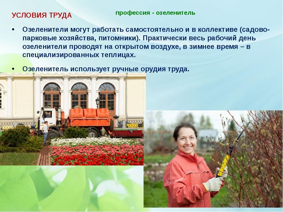 профессия - озеленитель   УСЛОВИЯ ТРУДА Озеленители могут работать самостоя...